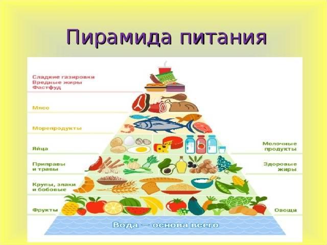 Из чего состоит пирамида здорового питания?