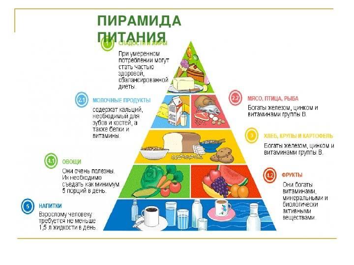 Пирамида здорового питания (пищевая пирамида) все от а до я!