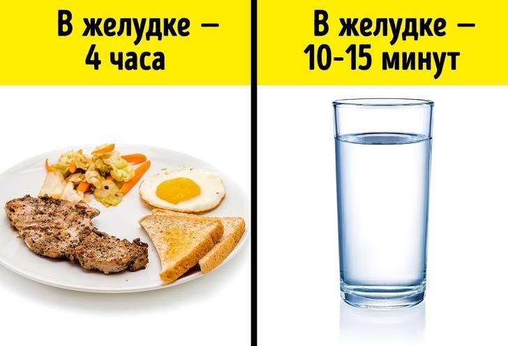 Как правильно пить воду: почему важно потребление для организма человека, что употреблять, как начать, как нужно, можно ли на голодный желудок?