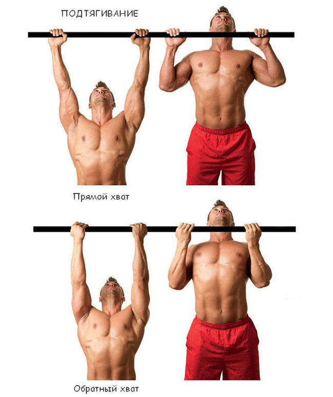 Как накачать спину на турнике: подтягивания для мышц спины
