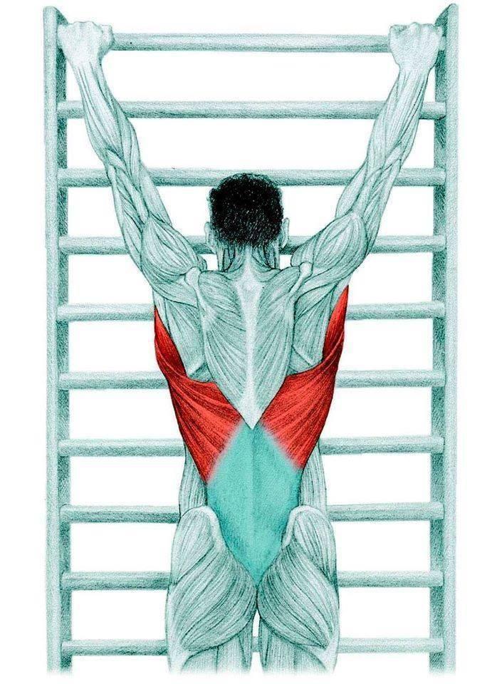 Растяжка поясницы: упражнения, чтобы растянуть мышцы поясничного отдела