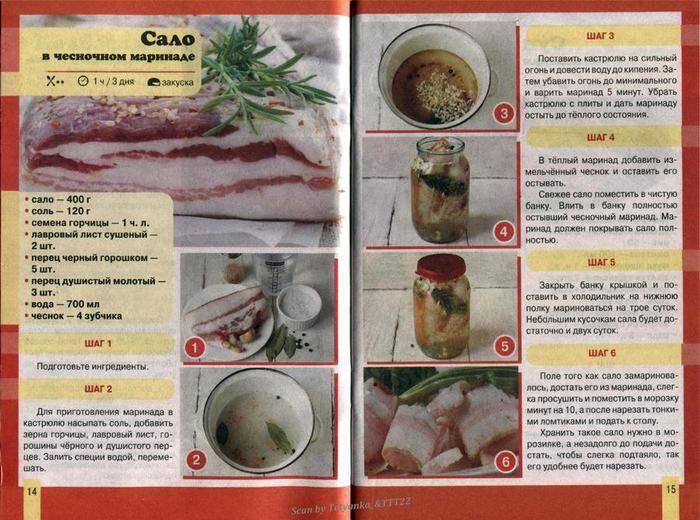 Как засолить горбушу вкусно и быстро под семгу: рецепты в домашних условиях
