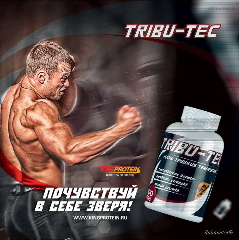 Бустеры тестостерона: 8 лучших препаратов для повышения тестостерона | promusculus.ru бустеры тестостерона: 8 лучших препаратов для повышения тестостерона | promusculus.ru