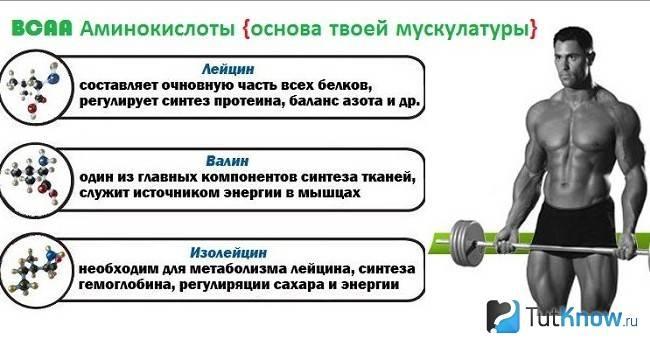 Глутаминовая кислота в бодибилдинге - как принимать, дозировка, инструкция