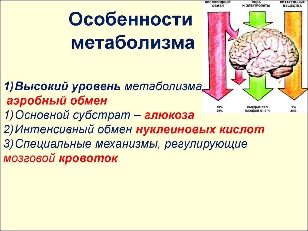 Лечение нарушений обмена веществ