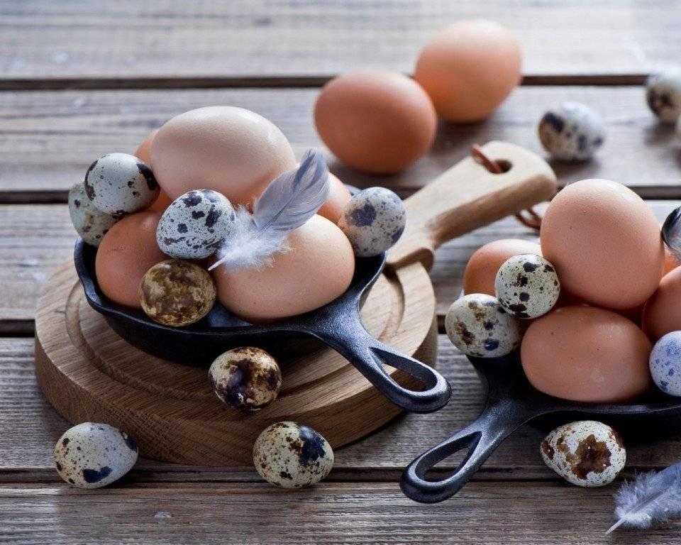 Яйцо куриное