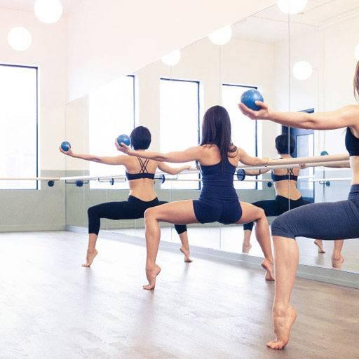 Что такое пор де бра в хореографии. порт де брас: понятие, классификация, направление, программа занятий, методы и нюансы проведения тренировок
