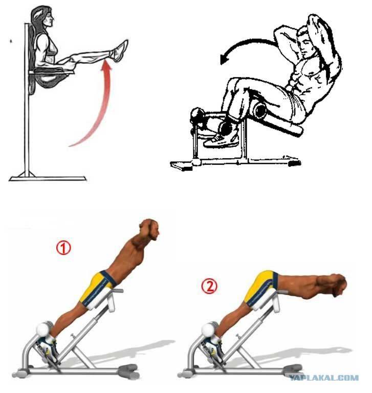 Упражнения для нижнего пресса для девушек и женщин в домашних условиях. упражнения на нижний пресс дома