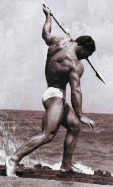 Флекc уиллер: антропометрия, факты из биографии и спорта