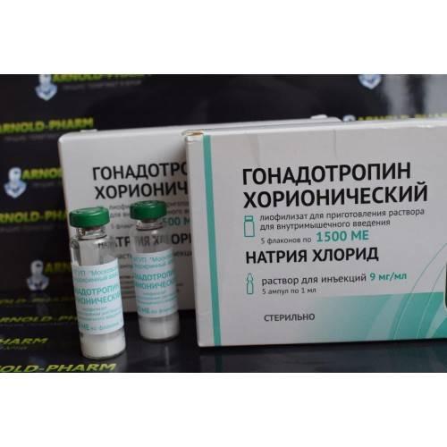 Хорионический гонадотропин – значение этого гормона для поддержания беременности. исследование уровня гонадотропина, нормы
