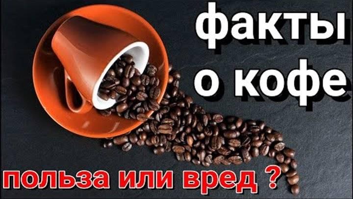 Кофе без кофеина вредно или полезно для здоровья?