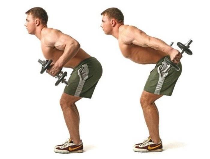Разгибание рук с гантелями в наклоне: эффективное упражнение на трицепс   irksportmol.ru