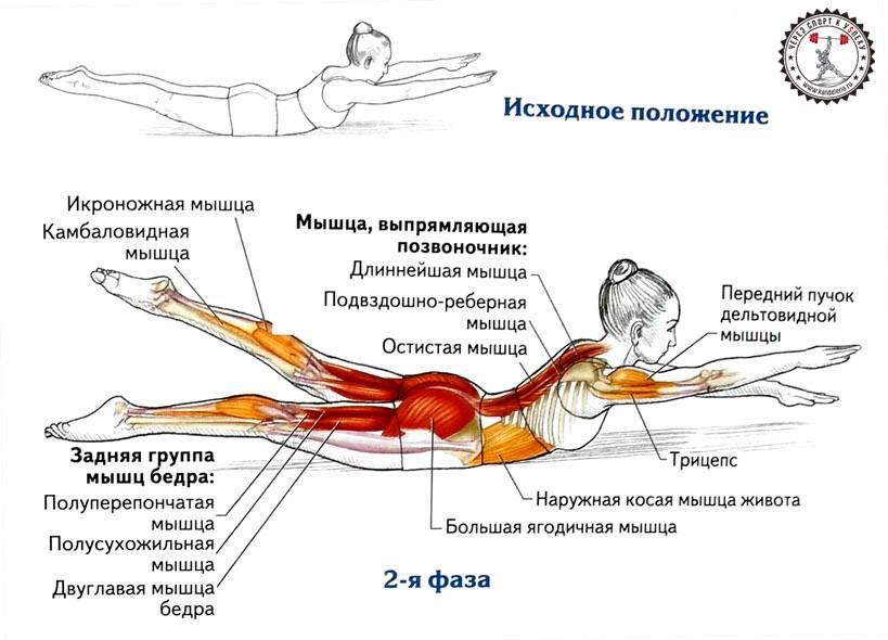 Упражнение велосипед  - как правильно делать лежа на спине для пресса и похудения с видео