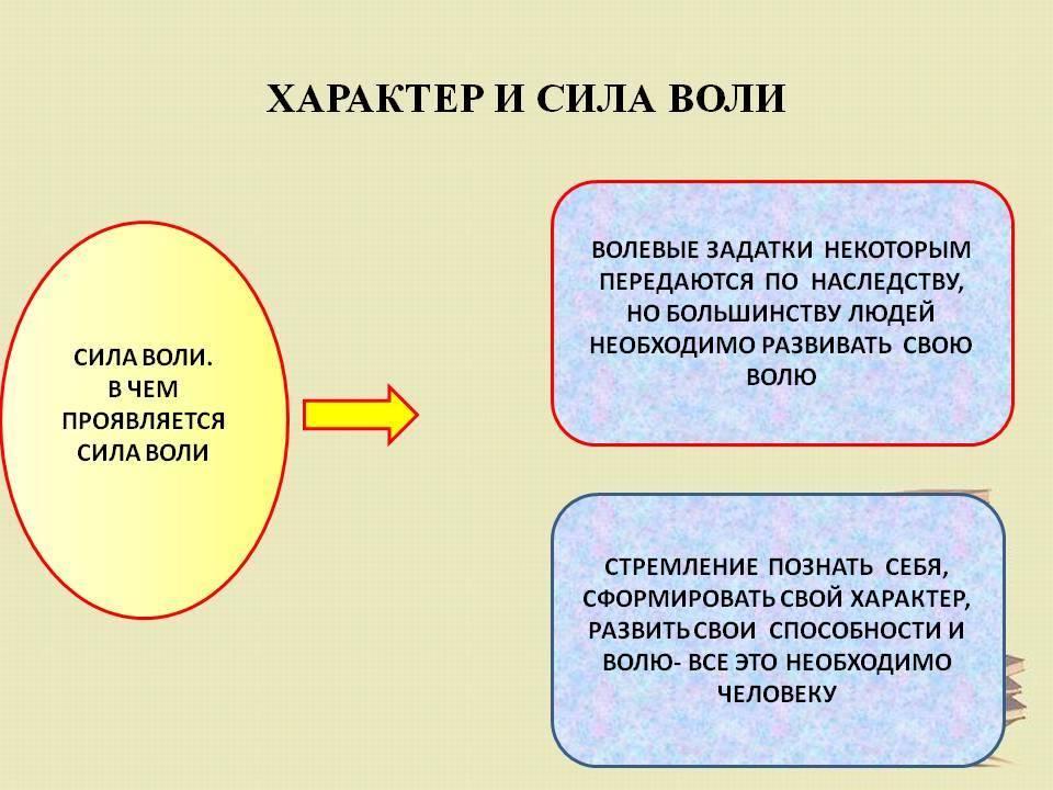 Изучение физиологии