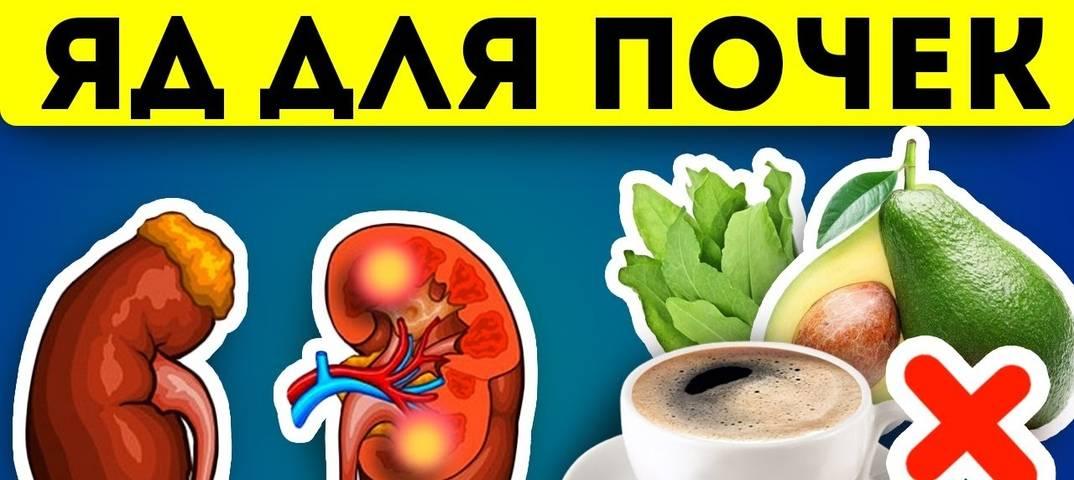 Диета при нефротическом синдроме, остром гломерулонефрите, хронической почечной недостаточности - сибирский медицинский портал