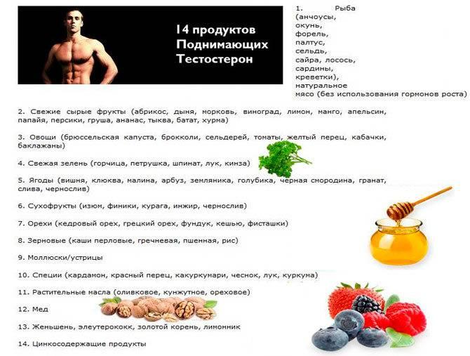 ᐉ как повысить тестостерон. 9 рекомендаций, чтобы поднять уровень мужского гормона ‖ как поднять тестостерон: ❶ методы ❷ советы ❸ инструкции от akloni