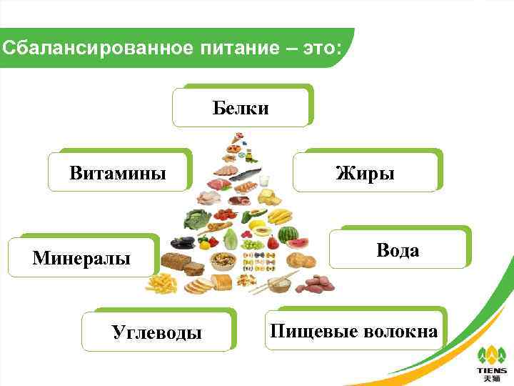 Основы питания человека