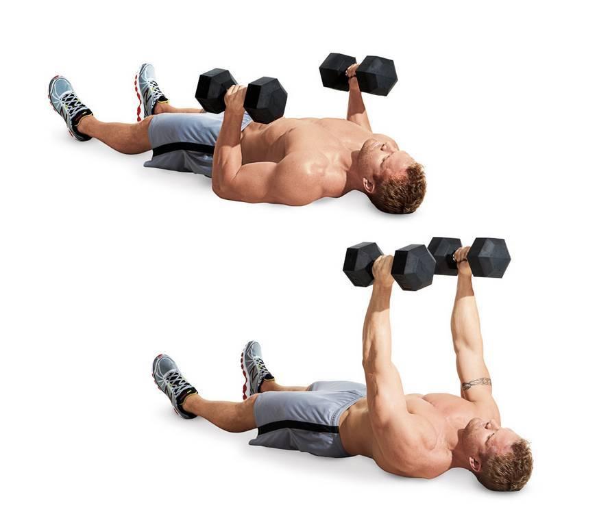 Комплекс упражнений с гантелями для женщин   musclefit