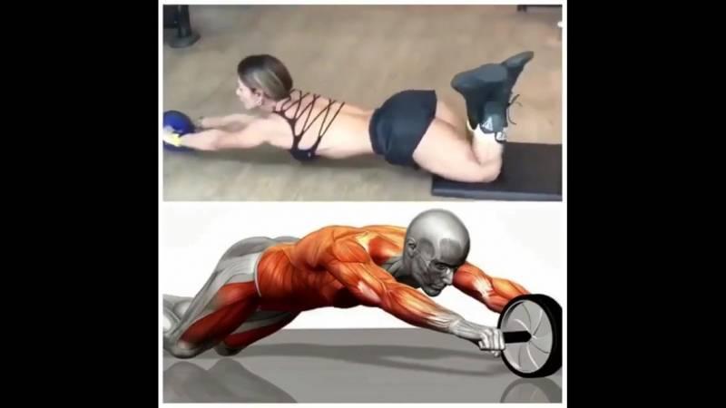 Мышцы кора - блог о спорте osporte