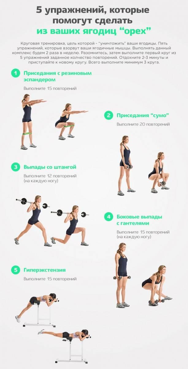 Программа тренировок для девушек с акцентом на ноги и ягодицы | fitbreak! всё о фитнесе и бодибилдинге