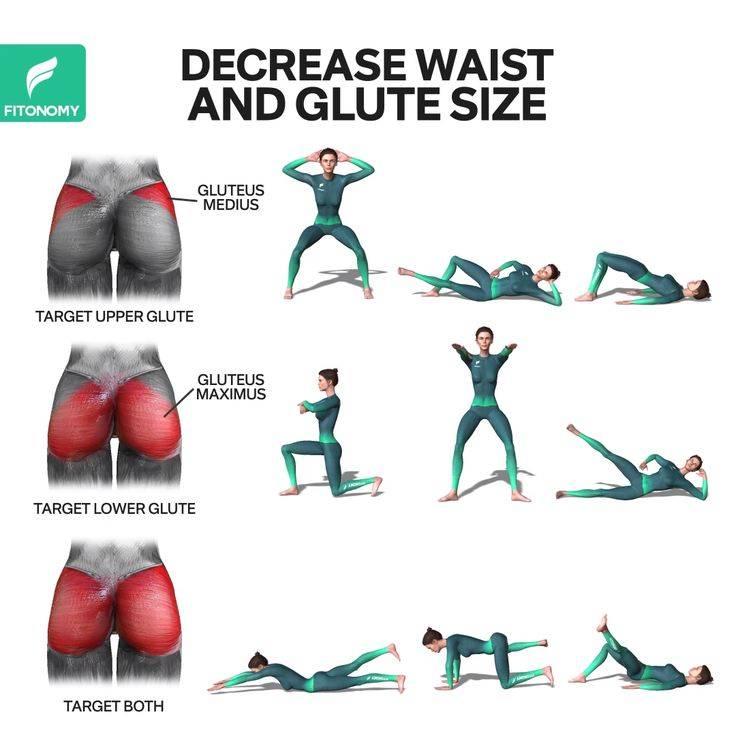 Эффективные упражнения для ягодиц пресса дома для девушек