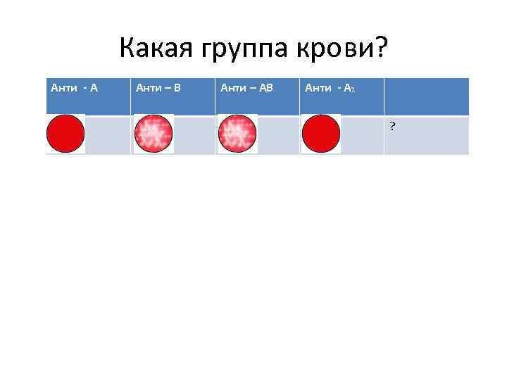 Какую кровь любят комары – вся правда о влиянии группы крови на укусы