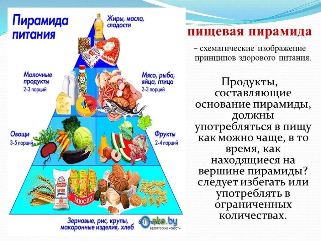 Что покупать в магазине, чтобы не остаться голодными? пирамида здорового питания