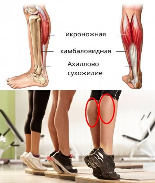 Почему болят икры ног | сеть клиник «здравствуй!»