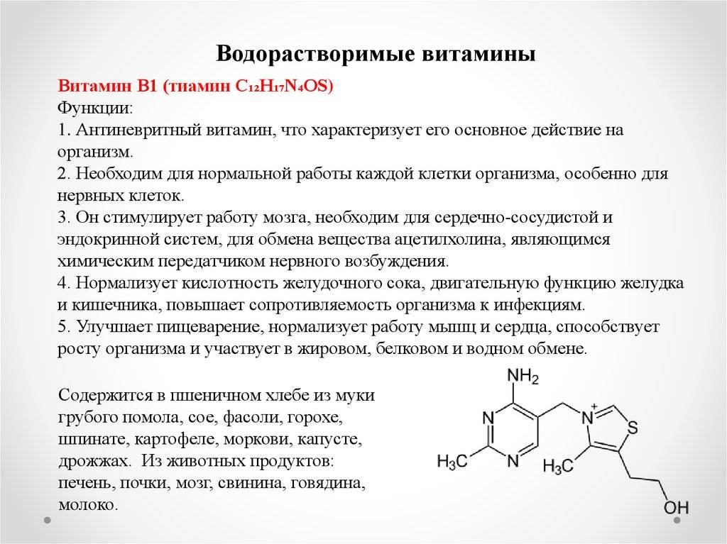 Все, что нужно знать о витамине b12  - dietology.pro