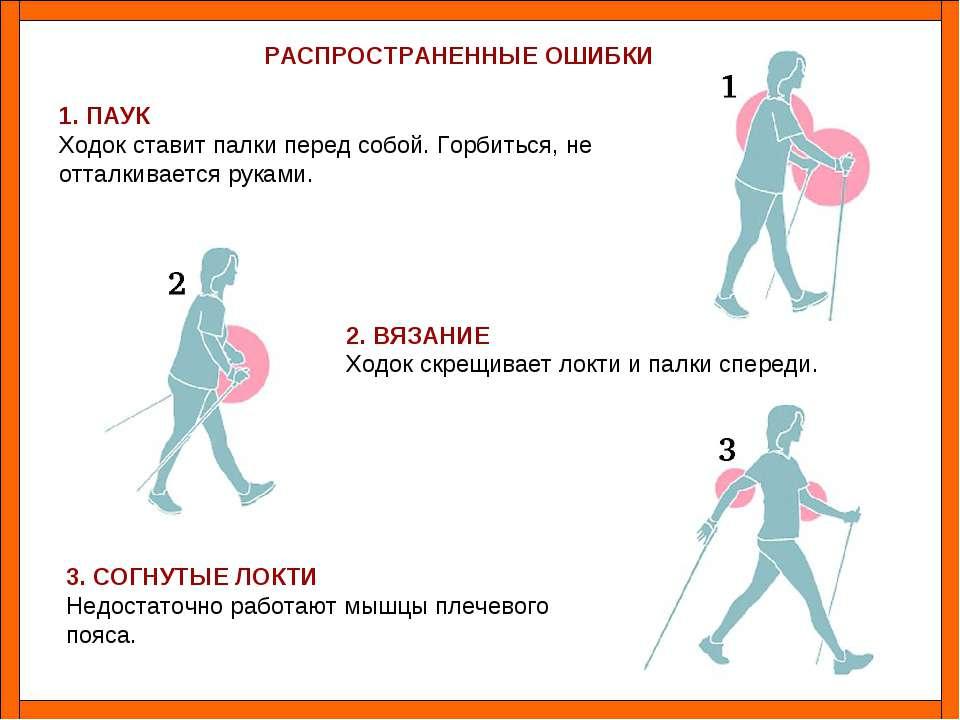 Что дают занятия скандинавской ходьбой. зачем ходить скандинавской ходьбой