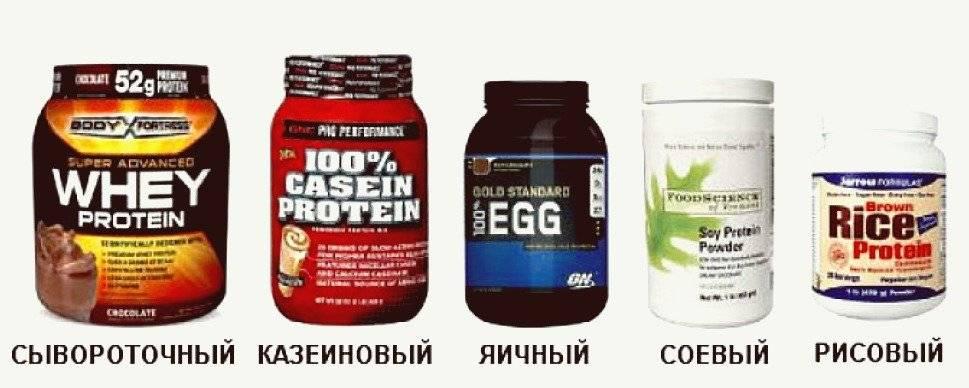 Какой лучше протеин при наборе мышечной массы, и почему