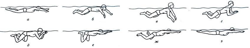 Плавание брассом - техника, особенности, советы   школа плавания swimming