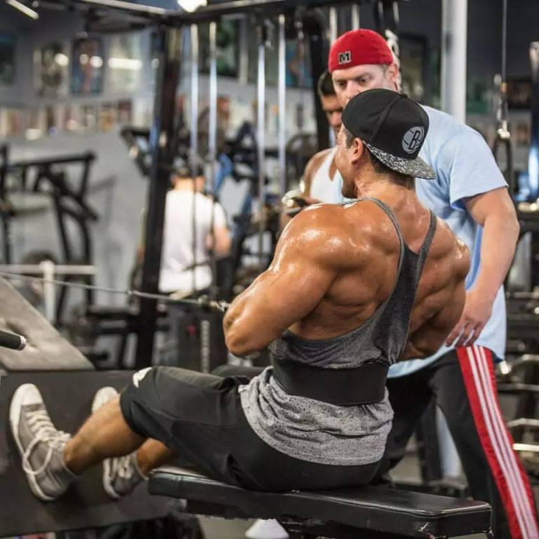 8 тренировочных программ на спину.