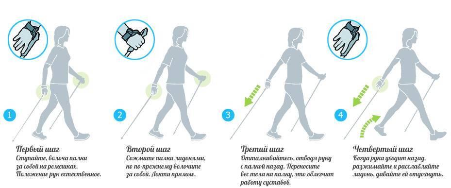 Скандинавская ходьба: польза и вред, как правильно ходить с палками
