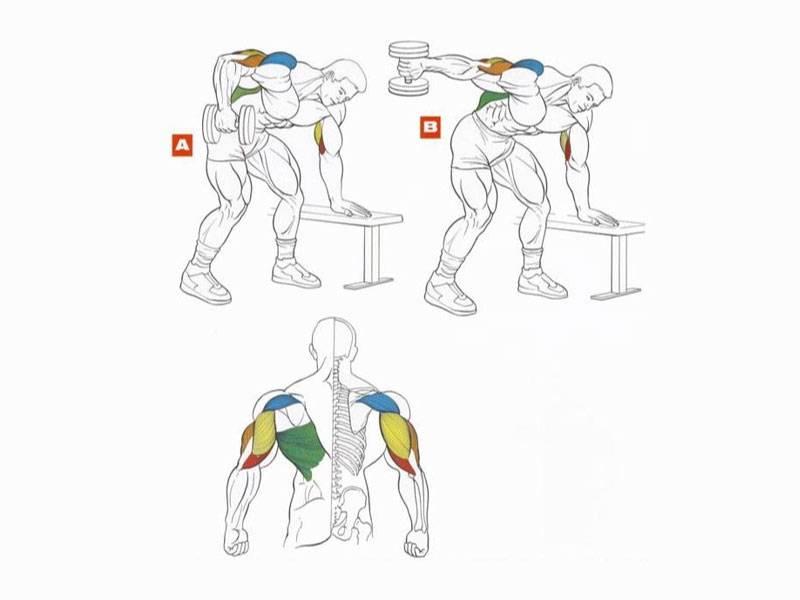 8 лучших упражнений на бицепсы — без железа