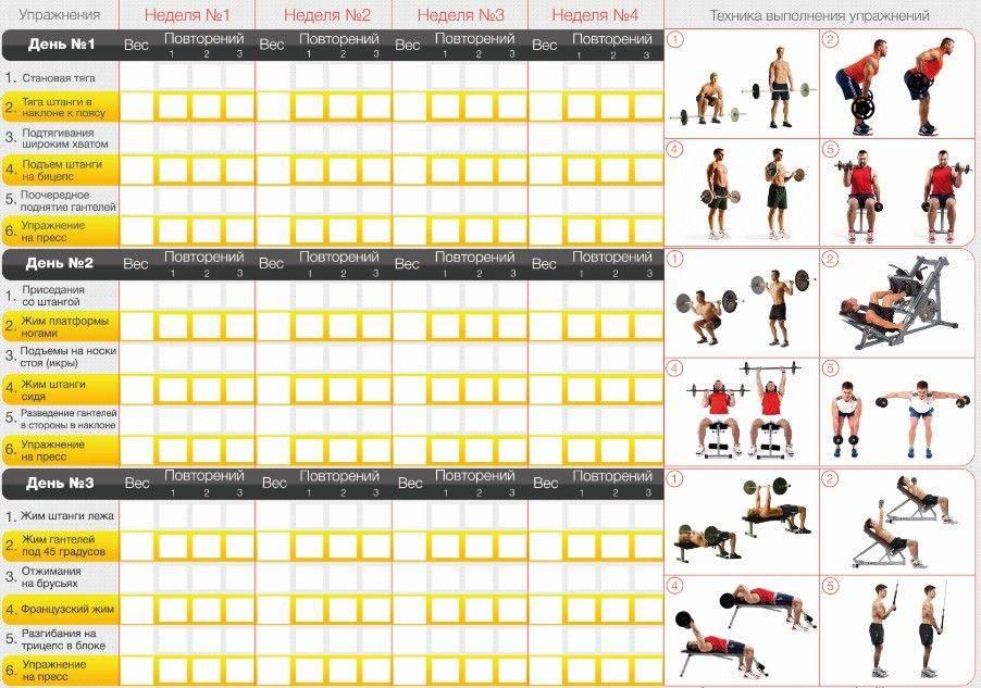 Принцип постепенности в тренировках