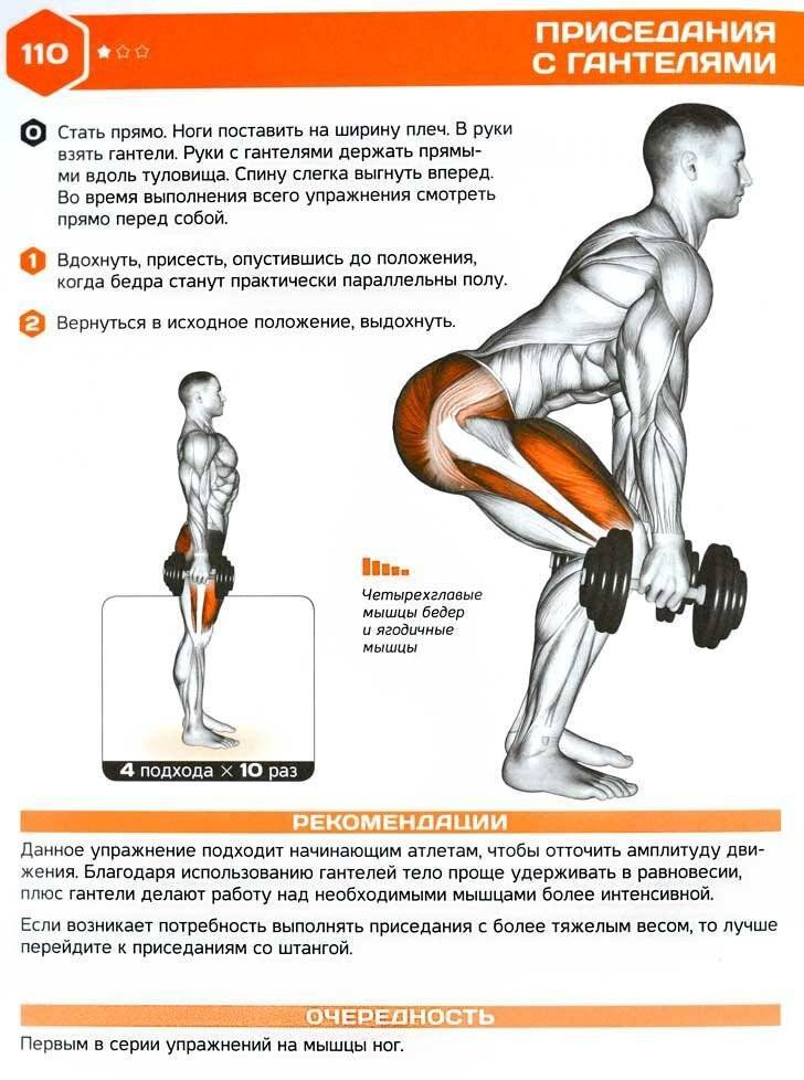Приседания : польза упражнения для здоровья мужчин, техника выполнения с собственным весом и с отягощением | xn--90acxpqg.xn--p1ai