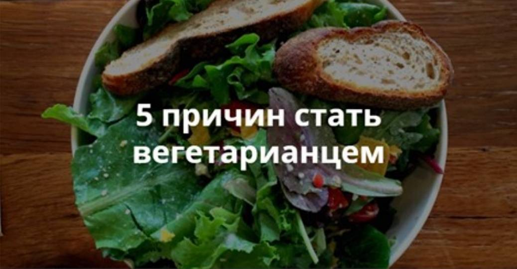 Вред и польза вегетарианства для женщин и мужчин