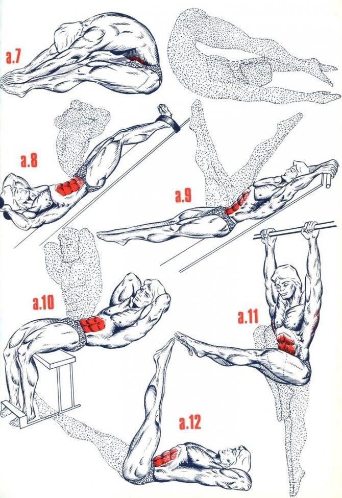 9 лучших упражнений для нижнего пресса