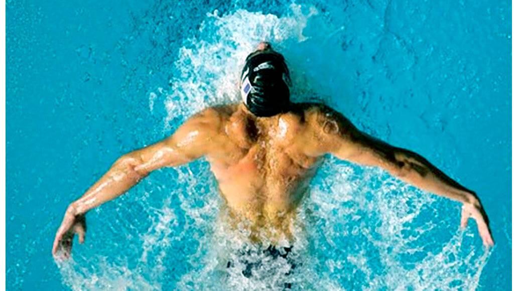 Какие мышцы работают при плавании? что развивает плавание?