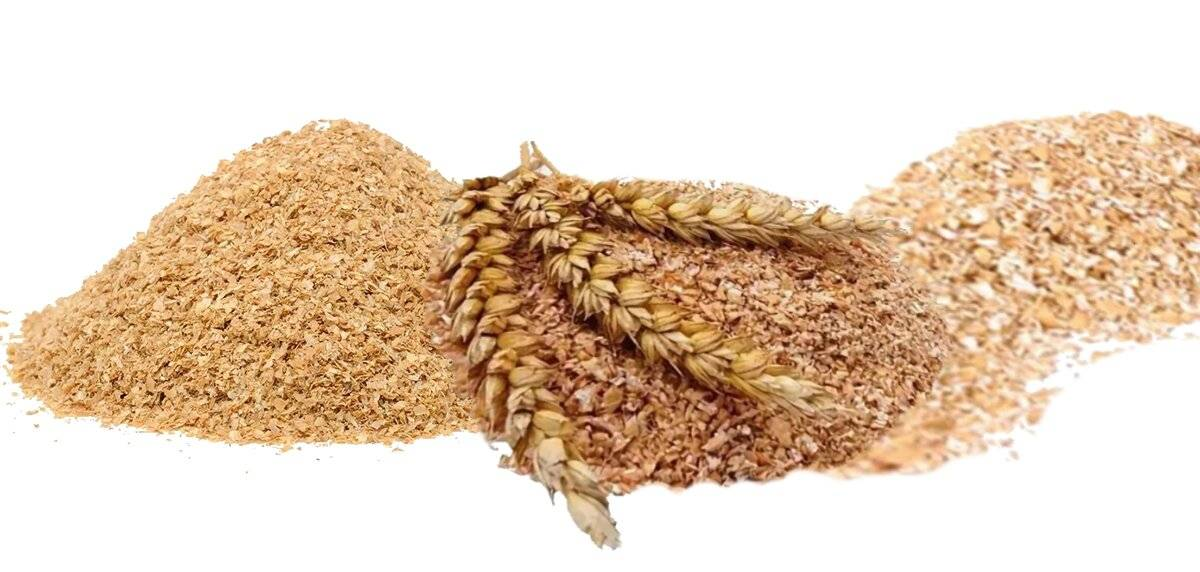 Пищевые волокна – диетическая клетчатка