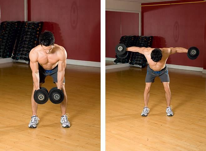Махи гантелями в стороны: вариации, польза, какие мышцы работают