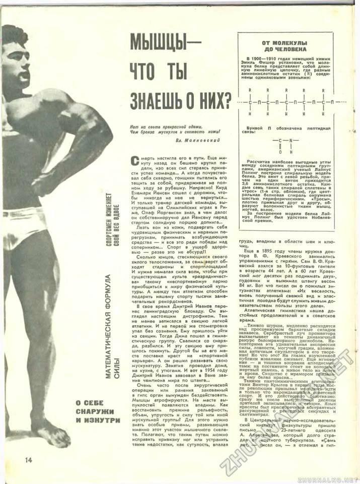 Зожник |   тренировка: на все тело от джо вейдера