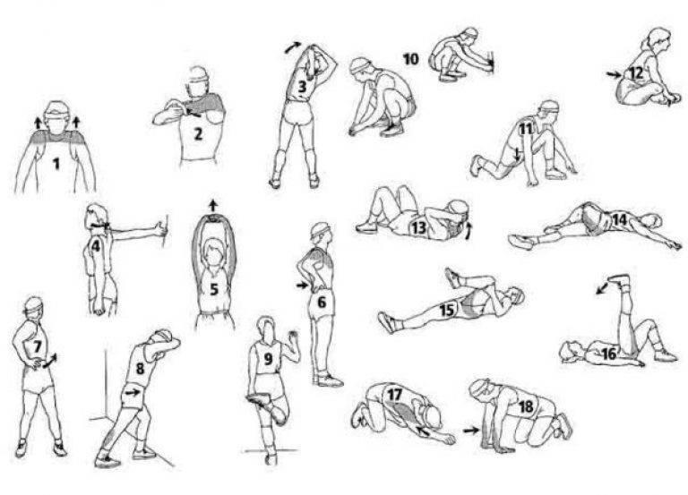 Заминка и разминка - успокаивающие и разогревающие упражнения с удобным приложением