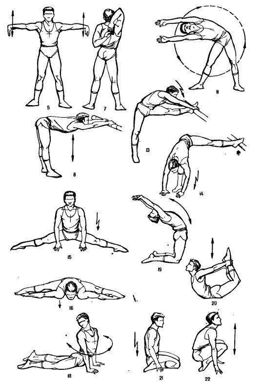 Упражнения для развития гибкости тела - комплекс упражнений на растяжку