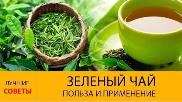 5мифов озелёном чае, которым пора перестать верить | ваш спорт