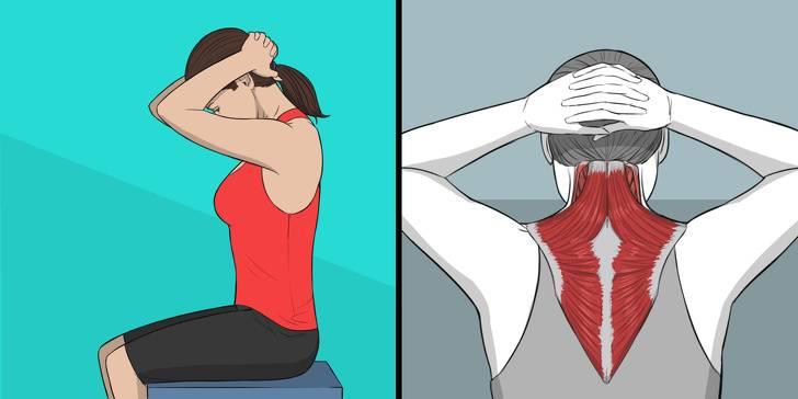 Растяжка позвоночника: показания, эффективность, лучшие упражнения