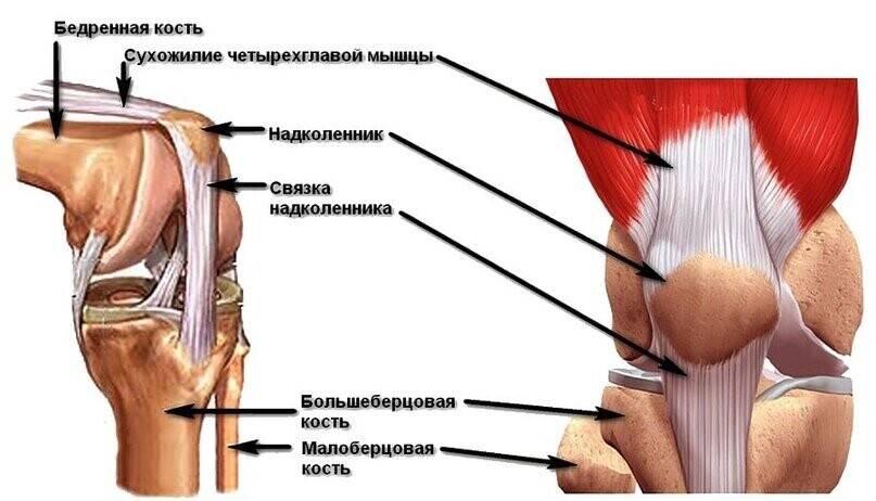 Лечение при растяжениях и разрывах связок колена - диагностика, первая помощь, восстановление связок