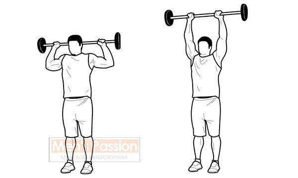 Жим штанги из-за головы стоя или сидя - идеальное упражнение для тяжелоатлетов