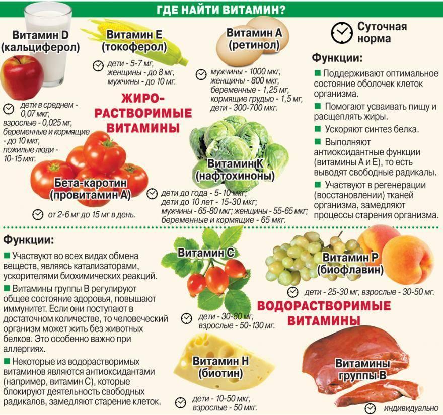 Витамин а - полезные свойства и содержание в продуктах